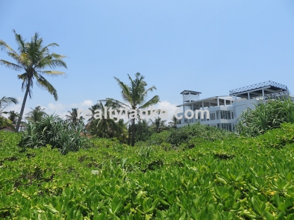 Breathtaking Beach Property in Weligama