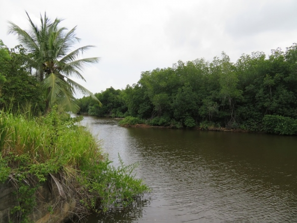 Peaceful Relaxing River Front Property