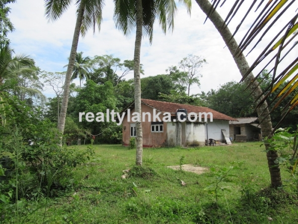 Property With A Beautiful Paddy View