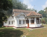Old Colonial House with a Rubber Plantation AI 03