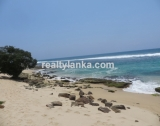 WB 12 - Breathtaking Beach Property in Weligama