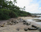 Beachfront property with panoromic view DB 26