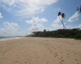 7.5 Acres Beach Property In Rekawa TB 04