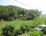 MI 19 - Elevated Paddy View Property In Mirissa